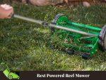 Best Powered Reel Mower