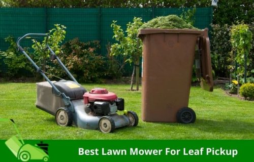 Best Lawn Mower For Leaf Pickup – Top Rated &  Best Selling Picks