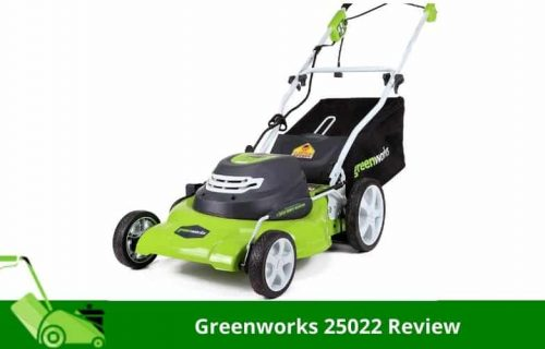 Greenworks 25022 Review by Expert