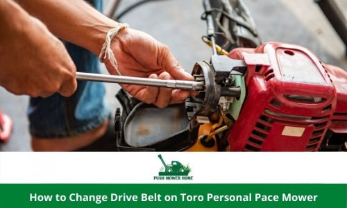 How to Change Drive Belt on Toro Personal Pace Mower – Easy 8 Steps
