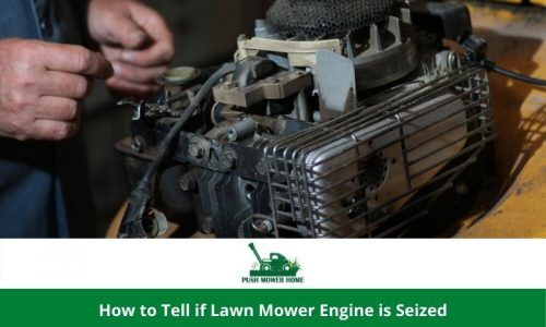 How to Tell if Lawn Mower Engine is Seized | Lesson for Beginner to pro!
